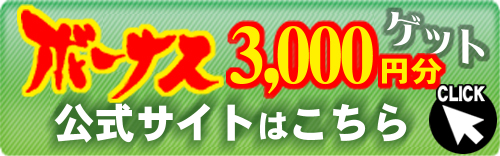 bonus3000yen2
